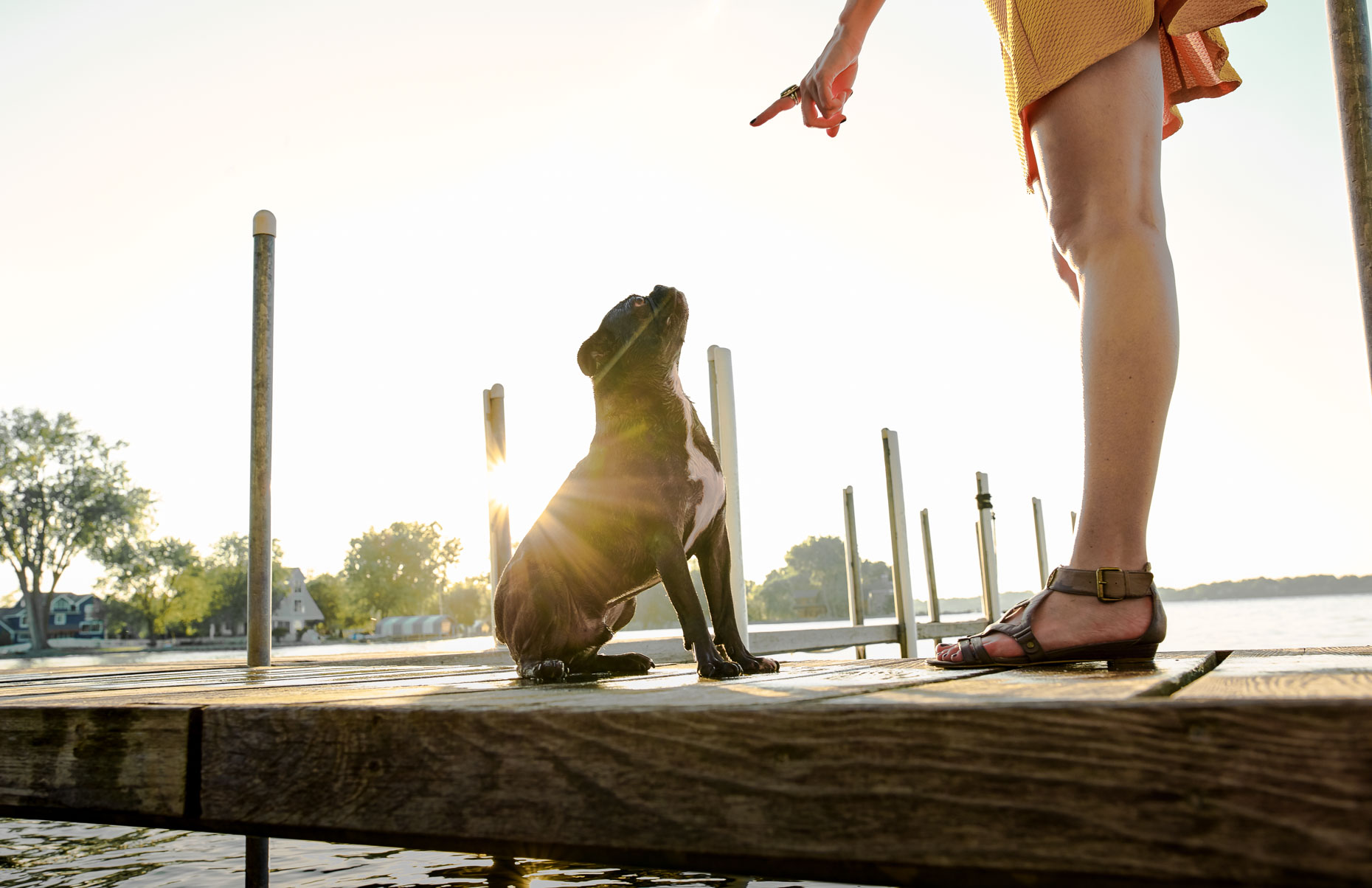 A-woman-teaching-her-little-dog-how-to-sit-as-they-stand-on-the-pier